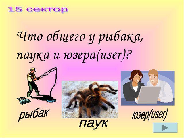 Что общего у рыбака, паука и юзера(user)?