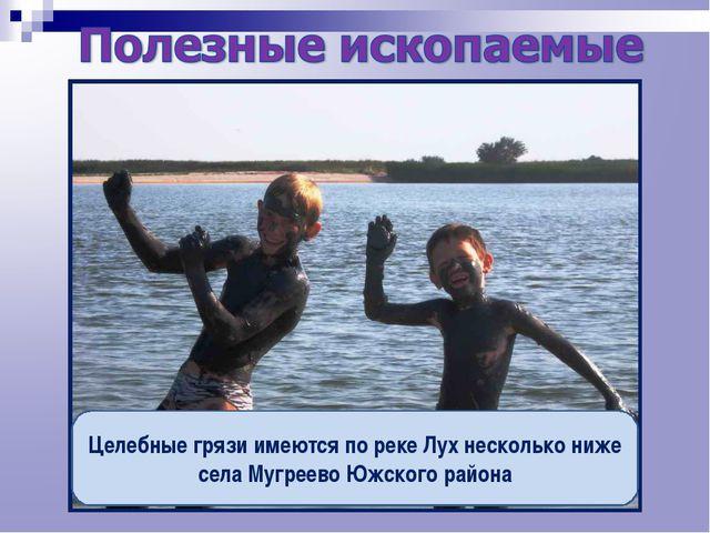 Целебные грязи имеются по реке Лух несколько ниже села Мугреево Южского района
