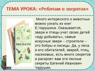 Много интересного о животных можно узнать из книг Е.Чарушина. Оказывается, з