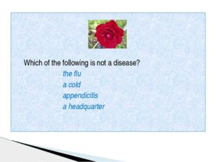 Which of the following is not a disease? the flu a cold appendicitis a headq