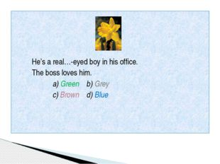 He's a real…-eyed boy in his office. The boss loves him. a) Green b) Grey c)