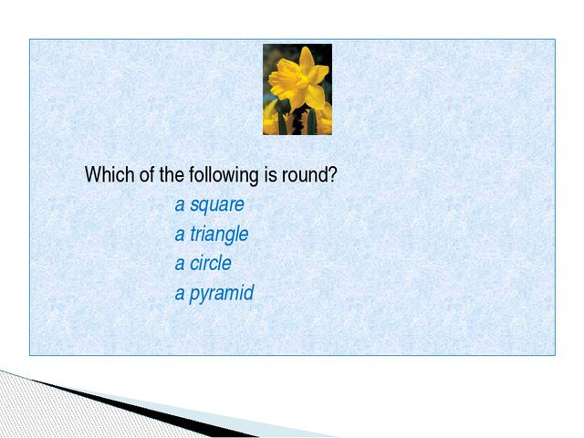 Which of the following is round? a square a triangle a circle a pyramid