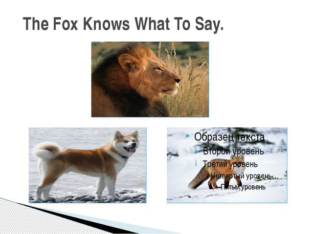 The Fox Knows What To Say.