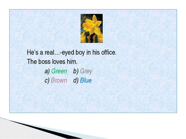 He's a real…-eyed boy in his office. The boss loves him. a) Green b) Grey c)...