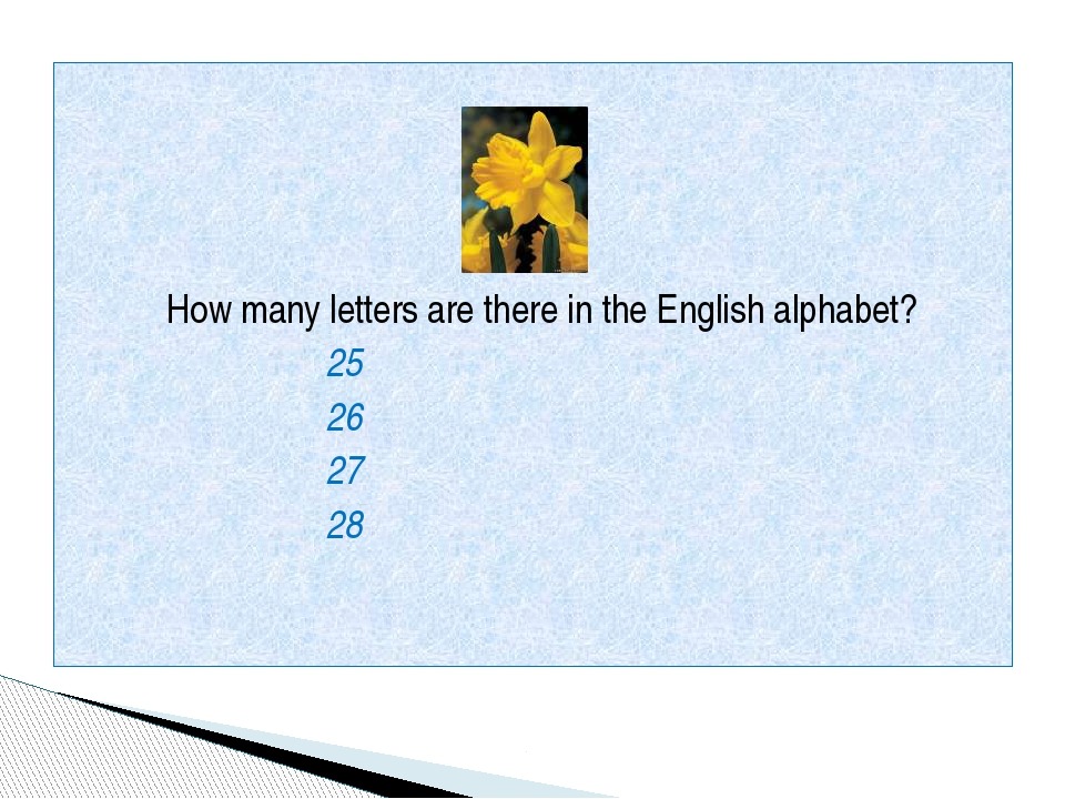 How many letters are there in the English alphabet? 25 26 27 28