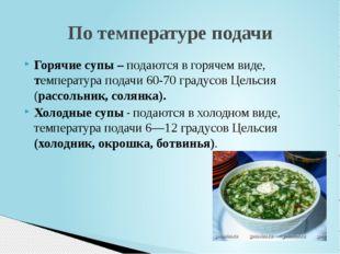 Горячие супы – подаются в горячем виде, температура подачи 60-70 градусов Цел