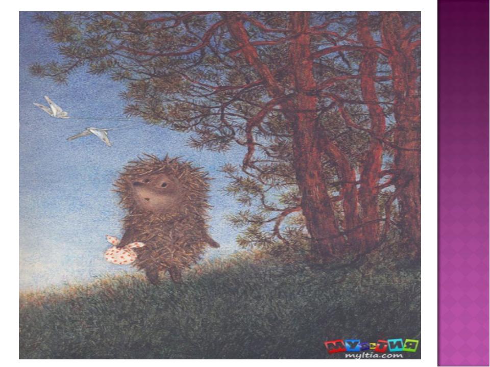 ежик и медвежонок считали звезды картинки самых прекрасных постов