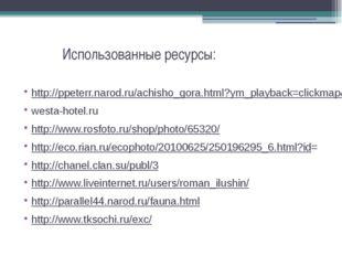 Использованные ресурсы: http://ppeterr.narod.ru/achisho_gora.html?ym_playbac