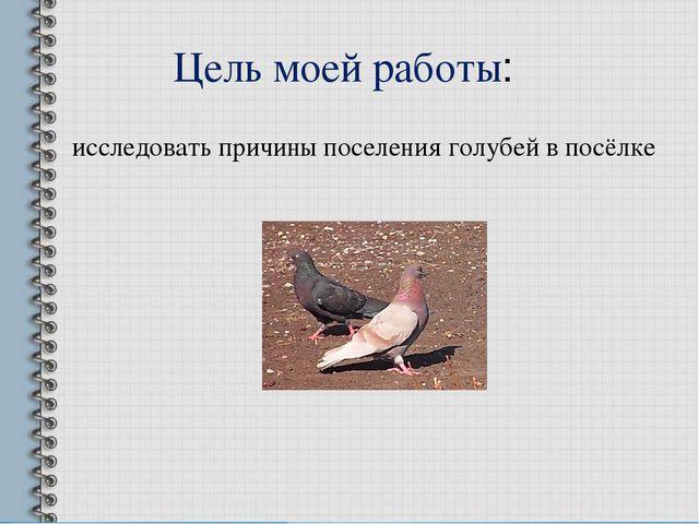 исследовать причины поселения голубей в посёлке Цель моей работы: