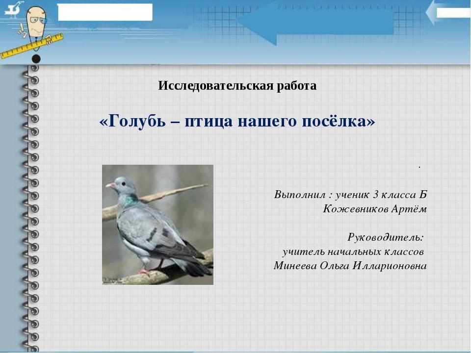 Исследовательская работа «Голубь – птица нашего посёлка» . Выполнил : ученик...