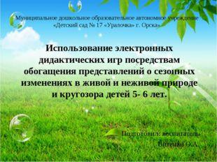 Муниципальное дошкольное образовательное автономное учреждение «Детский сад №