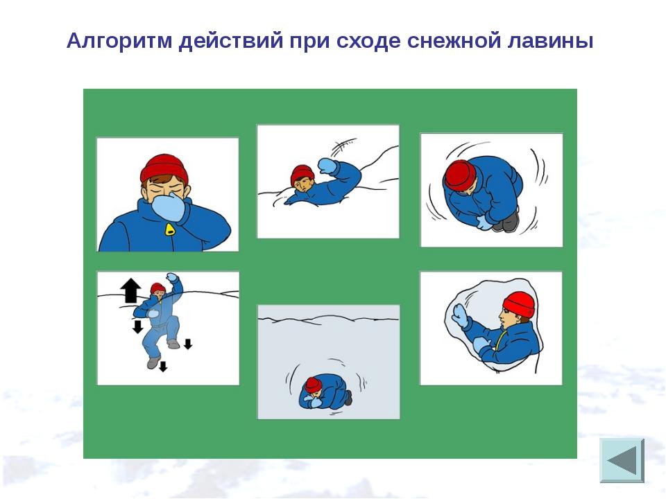Алгоритм действий при сходе снежной лавины
