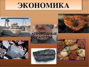 КАПИТАЛ ТРУД Железная руда Гранит Каменный уголь ПРИРОДНЫЕ БОГАТСТВА ЭКОНОМИКА