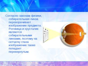 Согласно законам физики, собирательная линза переворачивает изображение предм