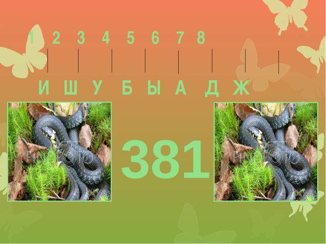 1 2 3 4 5 6 7 8 И Ш У Б Ы А Д Ж 381