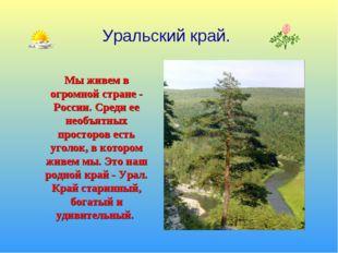 Мы живем в огромной стране - России. Среди ее необъятных просторов есть уголо
