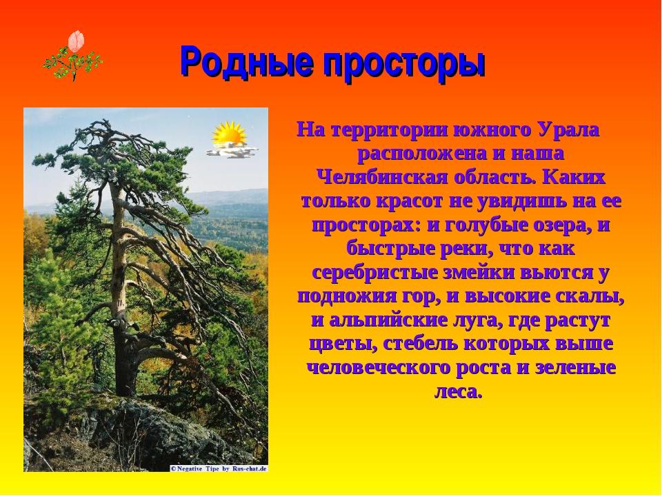 Родные просторы На территории южного Урала расположена и наша Челябинская обл...
