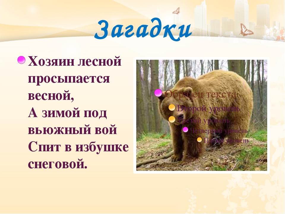 Загадки Хозяин лесной просыпается весной, Азимой под вьюжный вой Спит визбу...