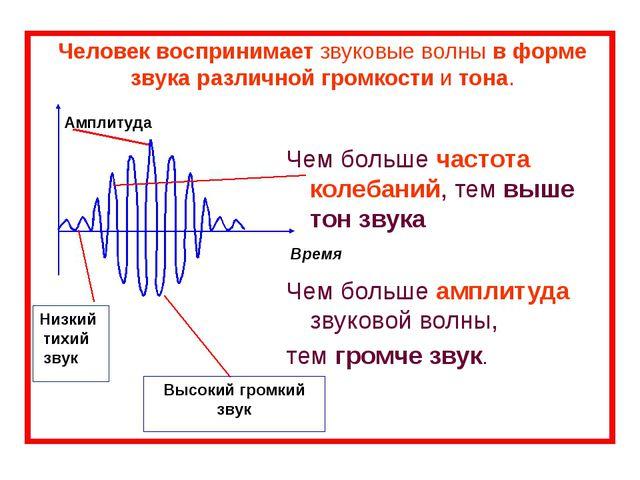 Человек воспринимает звуковые волны в форме звука различной громкости и тона....