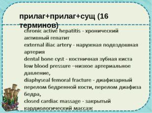 прилаг+прилаг+сущ (16 терминов)