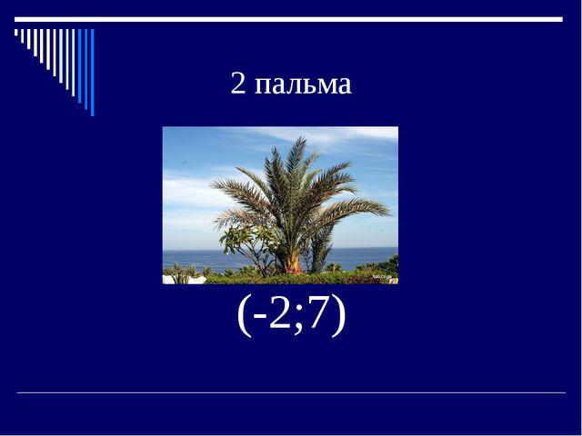 2 пальма (-2;7)