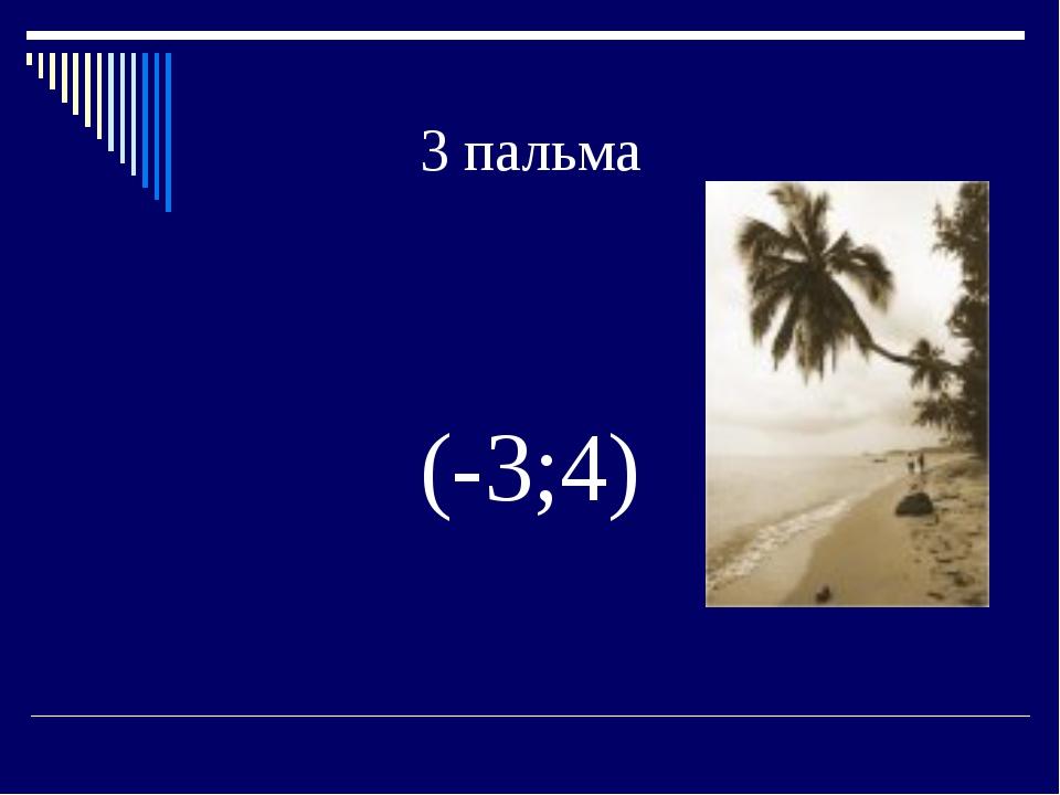 3 пальма (-3;4)