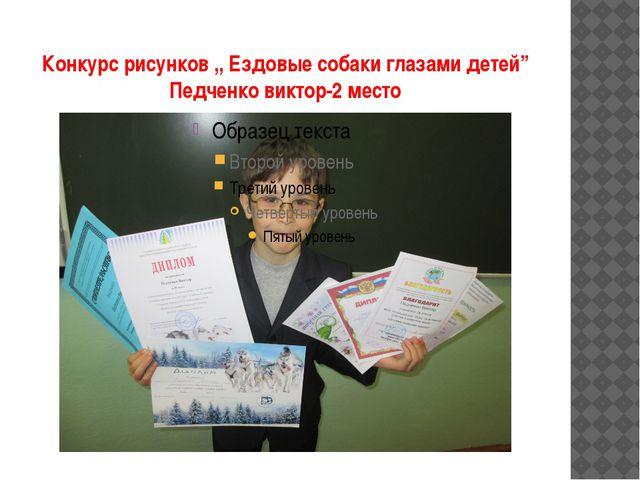 """Конкурс рисунков ,, Ездовые собаки глазами детей"""" Педченко виктор-2 место"""