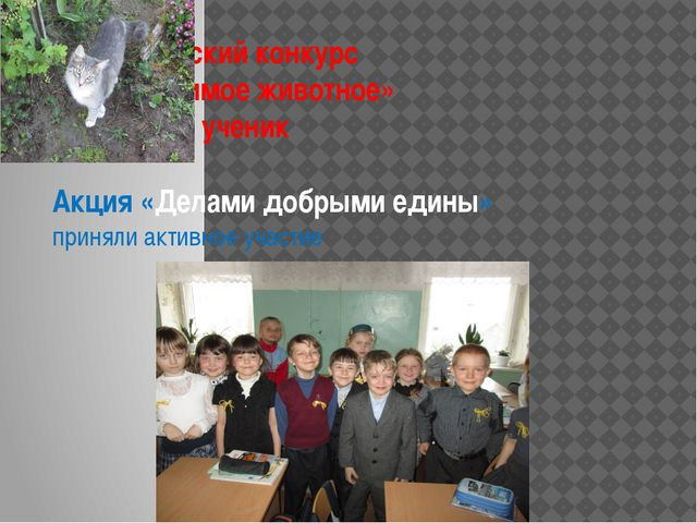 Всероссийский конкурс «Моё любимое животное» Участие – 1 ученик Акция «Делами...