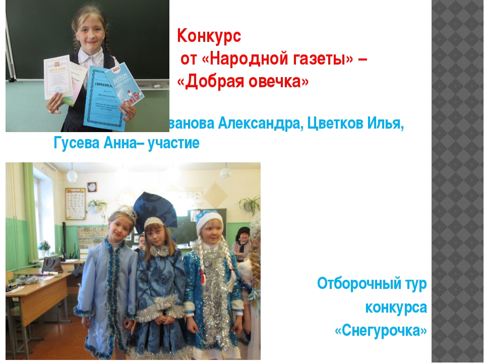 Конкурс от «Народной газеты» – «Добрая овечка» Иванова Александра, Цветков Ил...