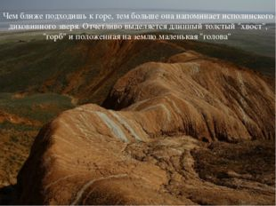 Чем ближе подходишь к горе, тем больше она напоминает исполинского диковинног