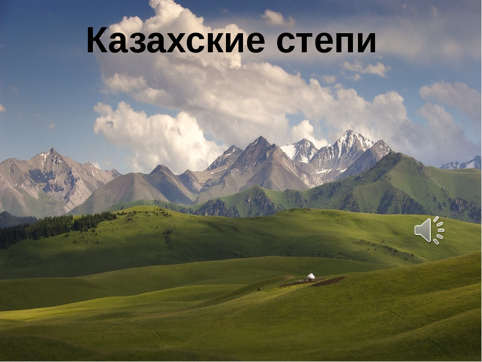 Казахские степи