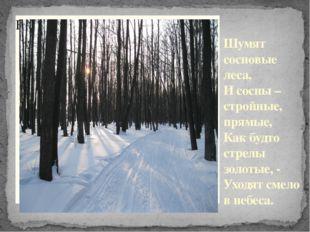 Шумят сосновые леса, И сосны – стройные, прямые, Как будто стрелы золотые, -