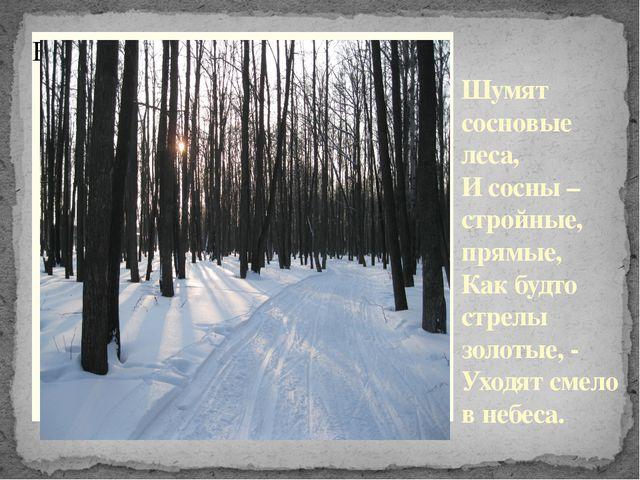Шумят сосновые леса, И сосны – стройные, прямые, Как будто стрелы золотые, -...