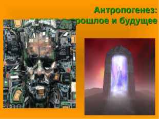 Антропогенез: взгляд в прошлое и будущее