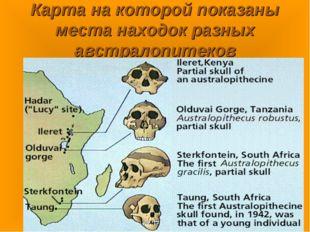 Карта на которой показаны места находок разных австралопитеков