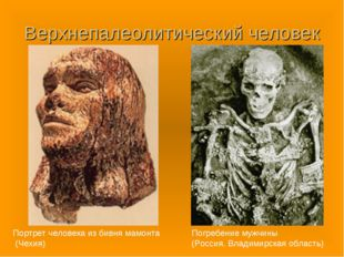 Верхнепалеолитический человек Портрет человека из бивня мамонта (Чехия) Погре