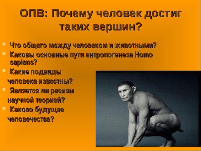 ОПВ: Почему человек достиг таких вершин? Что общего между человеком и животны...