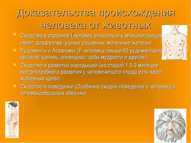 Доказательства происхождения человека от животных Сходство в строение (челове...