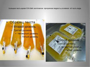 Большая часть крови-ПЛАЗМА-желтоватая прозрачная жидкость,основная её часть в