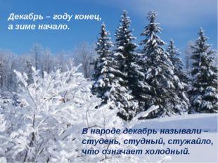 Декабрь – году конец, а зиме начало. В народе декабрь называли – студень, сту