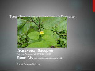 Тема «Травянистые лианы острова Путятина». Жданова Валерия Ученица 7 класса М