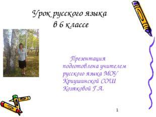 Урок русского языка в 6 классе Презентация подготовлена учителем русского язы