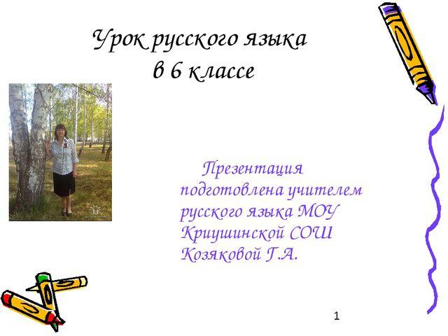 Урок русского языка в 6 классе Презентация подготовлена учителем русского язы...