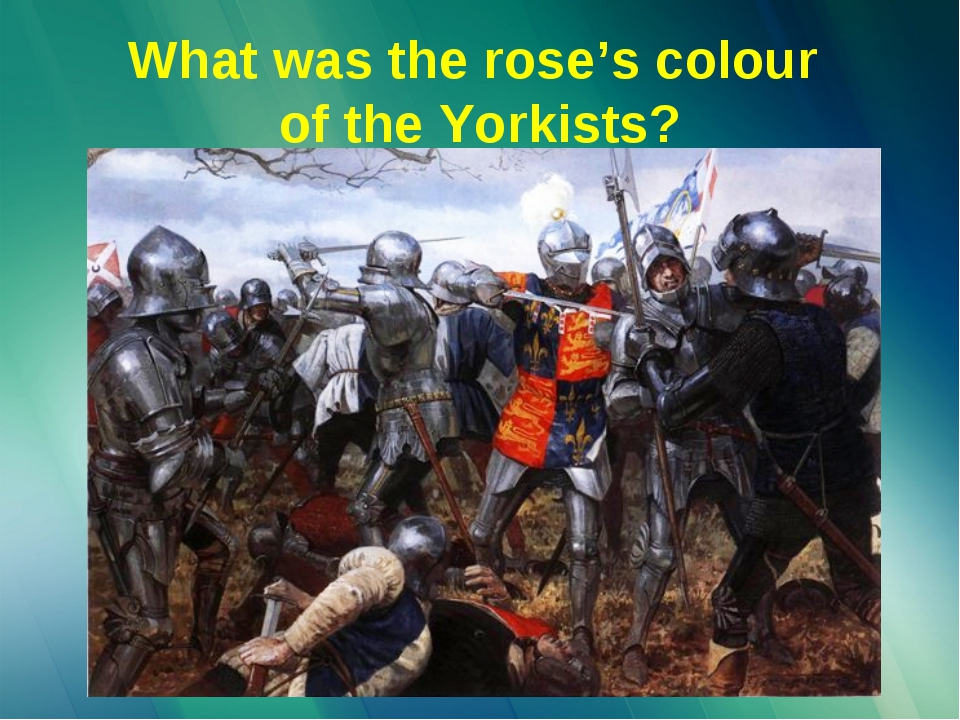 What was the rose's colour of the Yorkists?