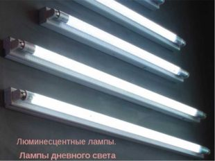 Люминесцентные лампы. Лампы дневного света
