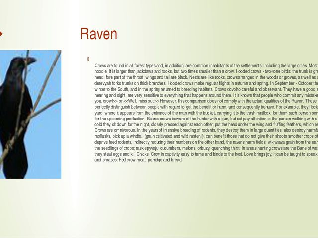 Raven Crows are found in all forest types and, in addition, are common inhab...