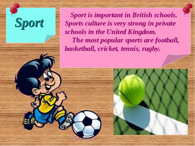 Sport Sport is important in British schools. Sports culture is very strong i...