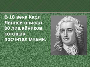 В 18 веке Карл Линней описал 80 лишайников, которых посчитал мхами.