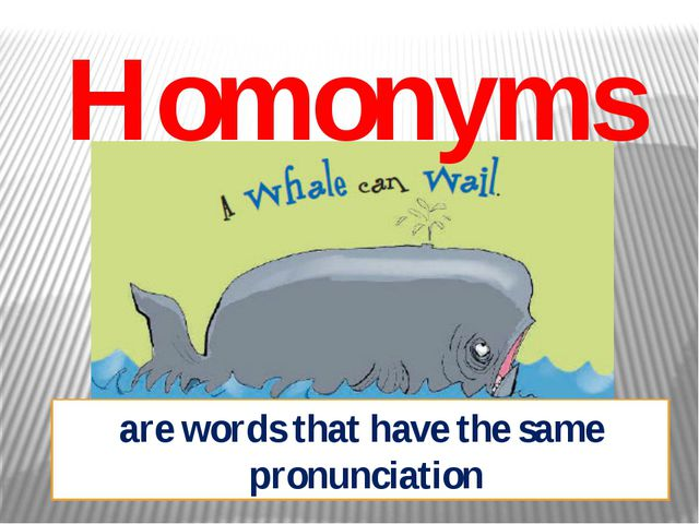 Homonyms are words that have the same pronunciation