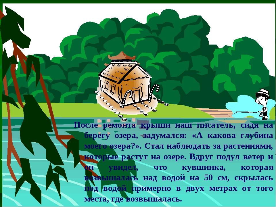 После ремонта крыши наш писатель, сидя на берегу озера, задумался: «А какова...